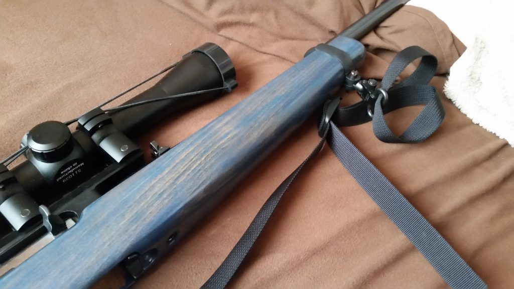 Ruger 10/22 with a blue stock.