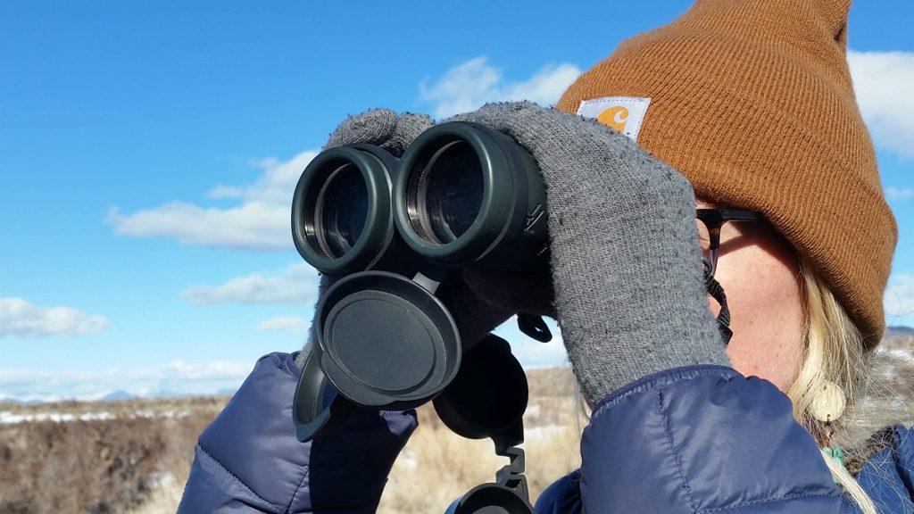 Vortex 10 42 Binoculars
